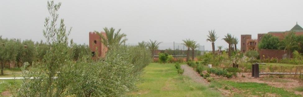 Trotz Corona haben wir in der Saison 2021 für Sie geöffnet, sofern sich die Lage nicht außergewöhnlich verschlechtert! Bis jetzt gehört Marokko zu den Ländern mit den niedrigsten Corona-Fällen,...